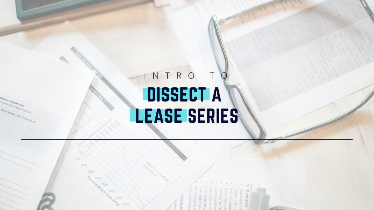 Dissect-a-Lease-Series-Cover